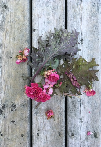 Discard roses and blue kale leaf on weathered boards