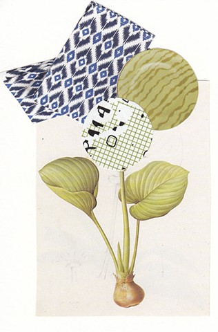 Dystopian Botanical Collage by Terri Whetstone