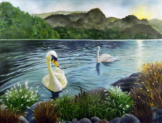 Two swans, blue river, mountains in background, sunrise reflection, grasses on bank