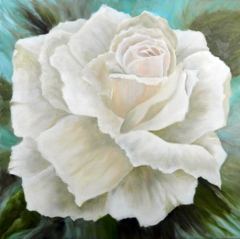 Single white rose, dynamic, with teal background
