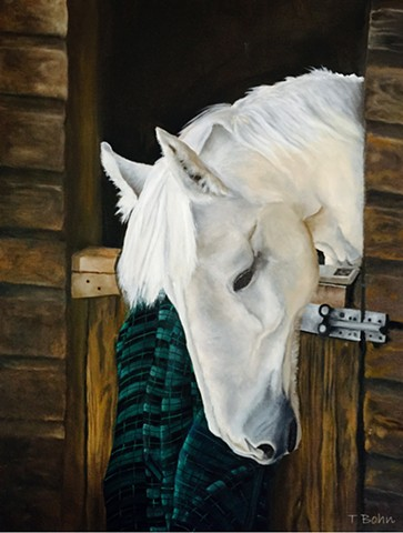 White horse in dark brown stable