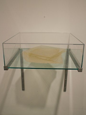 Sculpture, Installation, silicon, pigment, steel, glass, causey