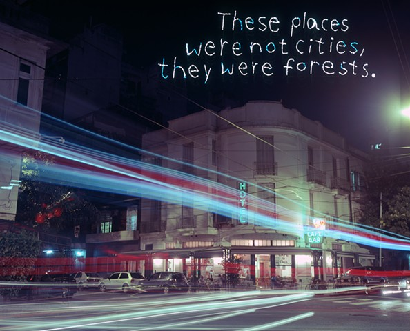 These Places Were Not Cities, They Were Forests