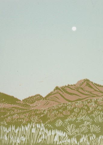 Moon over Ortiz Mountains