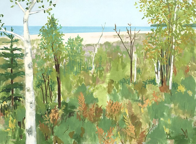 Birch Trees and Beach
