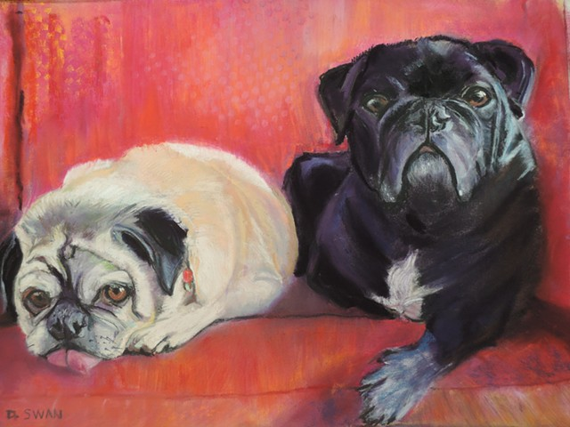 Pugs, Gracie and Hank