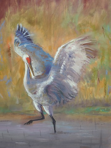 These magnificent birds rely on wetlands to survive. Adequate habitat is essential to the survival of animals. There are several organizations that support cranes including The International Crane Foundation, www.savingcranes.org