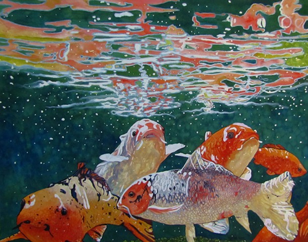 Koi Fish, Underwater, Lily Pads, Water, Reflections,Colorful
