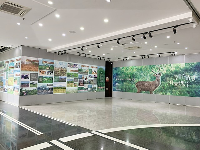 Hainan Eld's Deer Educational Exhibition, Haikou, Hainan, China
