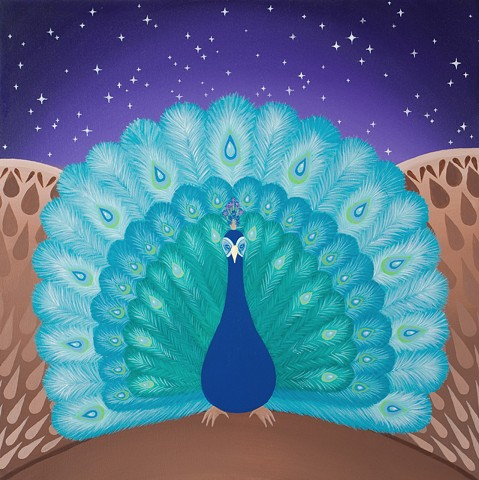 The Peacock in full feather backed up by starry sky.