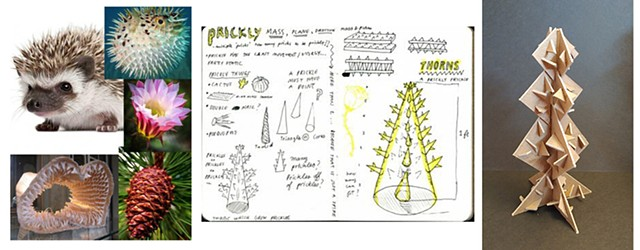 Prickly Julia Burkowitz Suffolk County Community College:  3D Design