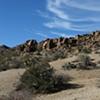 desert/tresed