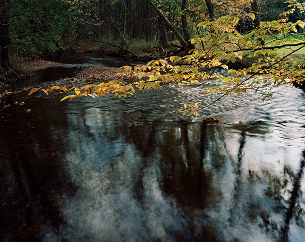 Mill River [View 2]