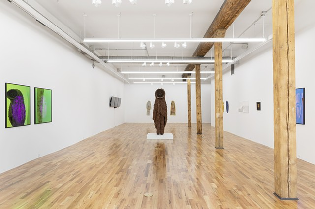 The Way the Mystic Sees, Gallery View