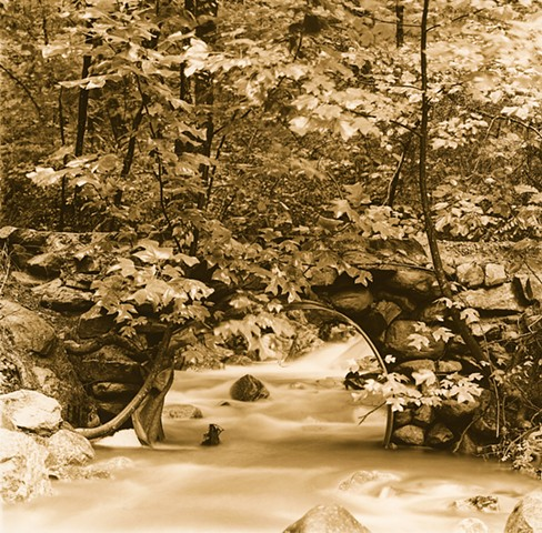 Dan Henderson photograph bridge Day Creek Use Area Jefferson National Forest