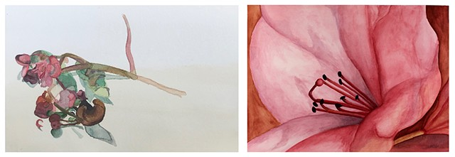Floral (diptych)