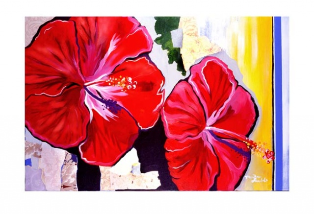 Hibiscus Mornings