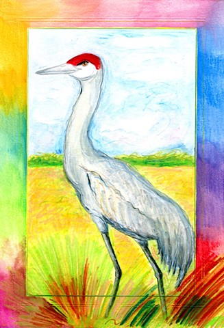 Greeting Card, Sandhill Crane