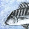 Fish # 6  c. 1994  198 x 200 cm