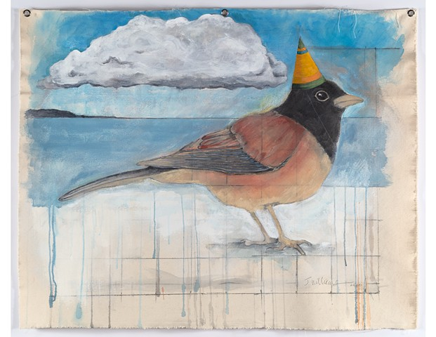 Ornithology:Junco (Available)