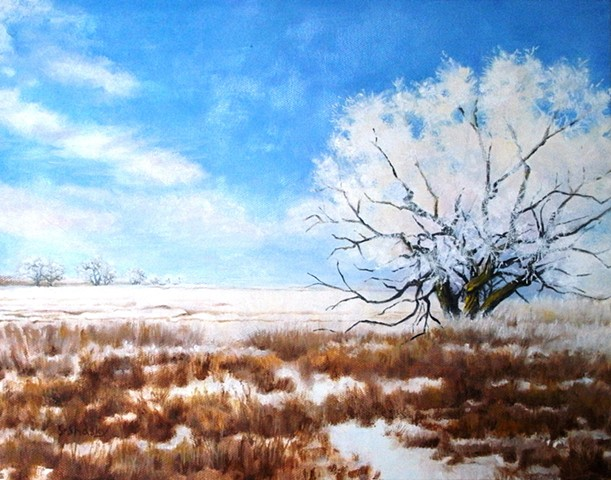 Touched by Frost -Sold-