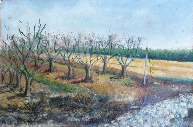 Nature painting, oil on wood painting, landscape painting, galilee scenery, northern Galilee painting, Almond grove