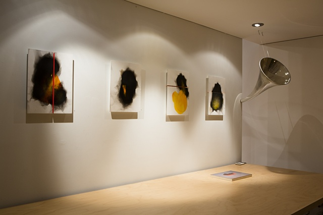 Bird - Like Things in Things Like Trees Installation view Les Yeux du Monde  Volee et Brulee series