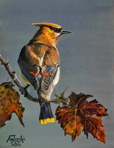 Autumn Waxwing Jan Fontecchio