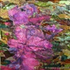 AZALEA TRAIL COLLAGE ON CANVAS SOLD