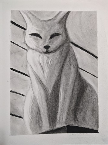 Sophia Foster @rogues_artwork Cat on Shelf Fall 2020 Prof. Carol Bishop, Drawing 2