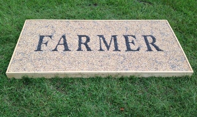 Joanne Aono, The Farmer, Seed, Perry Farm