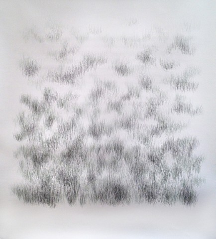 Joanne Aono, Home Fields, drawing, Green Fields Tract