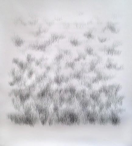 Joanne Aono, Home Fields, drawing, Green Fields Tract