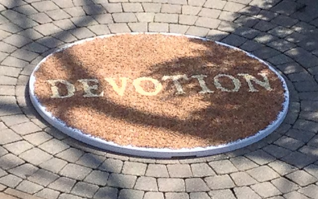 Joanne Aono, seed, site specific, Mary Oliver, Devotion