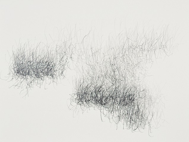 Joanne Aono, Home Fields, drawing, Colombia, Guasca