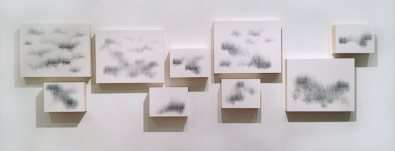 Joanne Aono, Home Fields, drawing, installation
