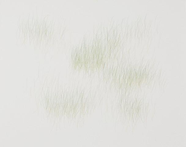 Joanne Aono, Green Fields, drawing, Issei