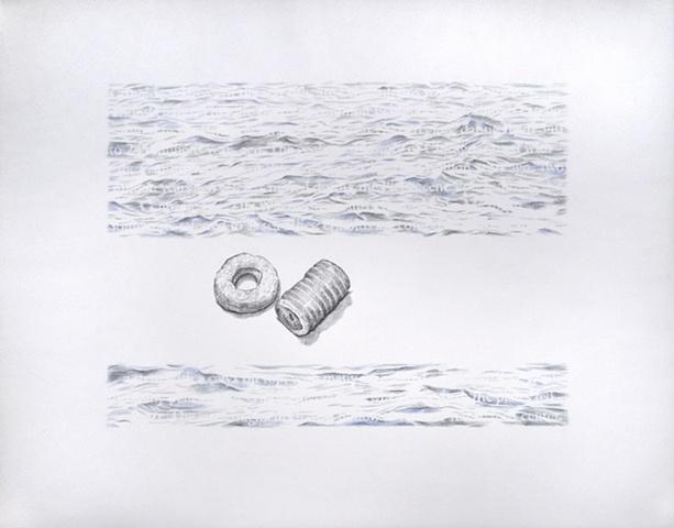 Joanne Aono Lake Michigan crinoid drawing