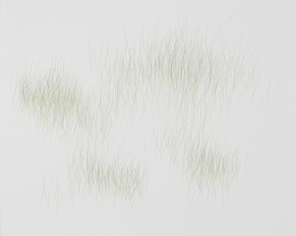 Joanne Aono, Green Fields, drawing, Sansei