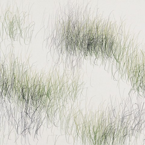 Joanne Aono, Green Fields, drawing