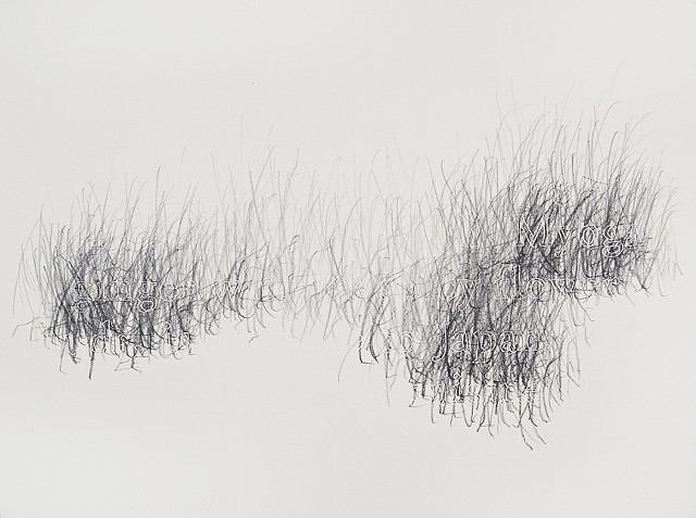 Joanne Aono, Home Fields, drawing