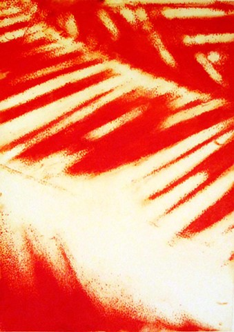 tropical red palm leaf shadow