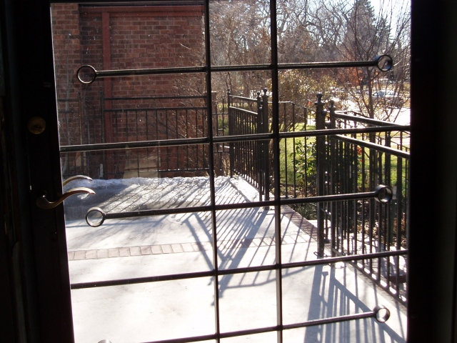 Railing Project in Denver