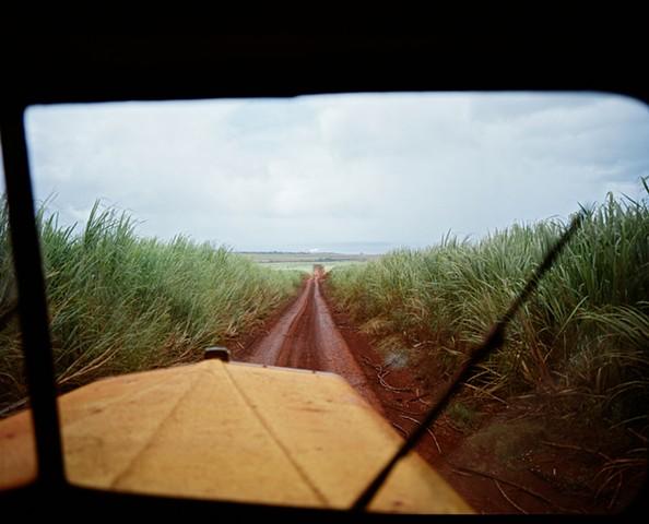 hawaii sugar cane plantation kauai gay robinson kimo proudfoot