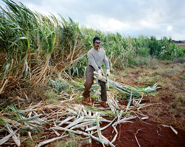 hawaii sugar cane plantation kauai gay robinson kimo proudfoot