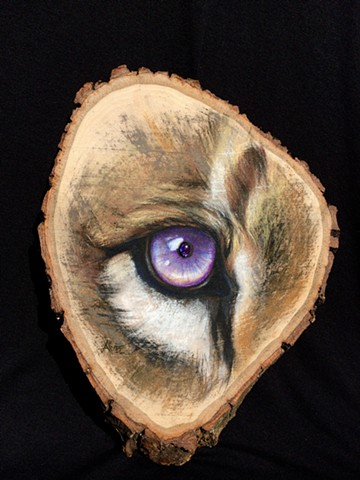 lion eye charcoal aimee kuester art artwork for sale purple original big cat feline cats
