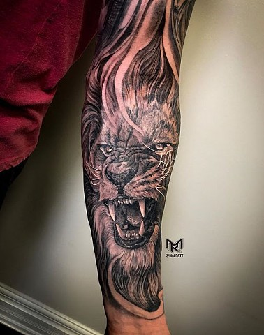 Healed Portrait of Lion