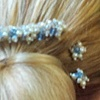 Diana Comb and Pins