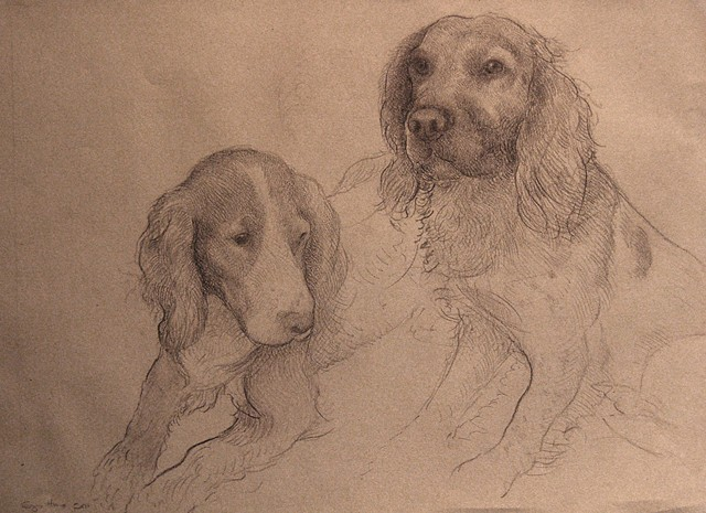 Drawing of Dogs