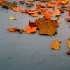 my personal autumn